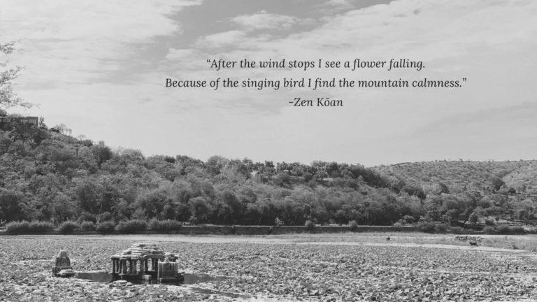 zen koan beginners mind